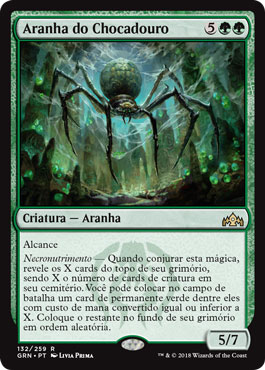 Aranha do Chocadouro