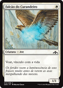 Falcão do Curandeiro / Healer's Hawk