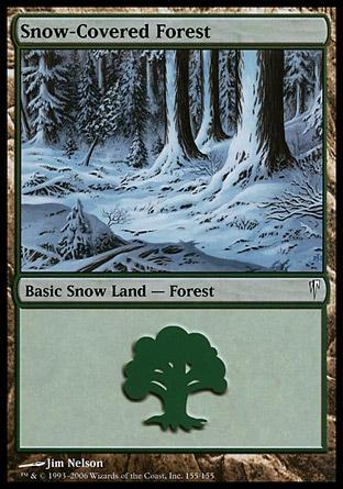 Floresta da Neve / Snow-Covered Forest