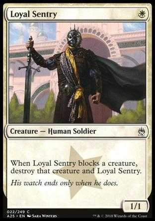 Sentinela Leal / Loyal Sentry