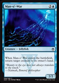 Physalia / Man-o'-War