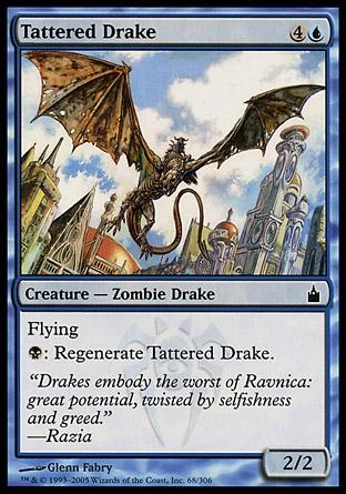 Dragonete Esfarrapado / Tattered Drake