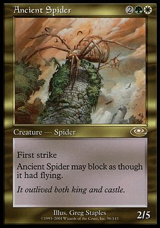 Aranha Anciã / Ancient Spider