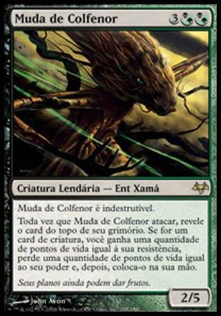 Muda de Colfenor / Sapling of Colfenor