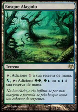 Bosque Alagado / Flooded Grove