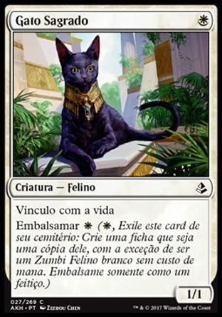 Gato Sagrado / Sacred Cat