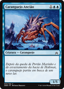 Caranguejo Ancião / Ancient Crab